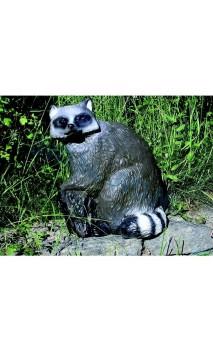 RATON(SRT Target 3D Raccoon ) - Tiro con l'arco di Ulisse - ULISSE TIRO CON L'ARCO -