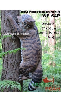 Cible CHAT FORESTIER GRIMPANT NATUR'FOAM