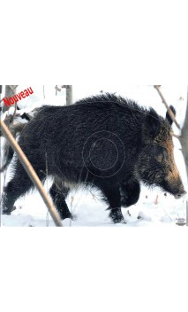 Boar target under snow LCC ARCHERY