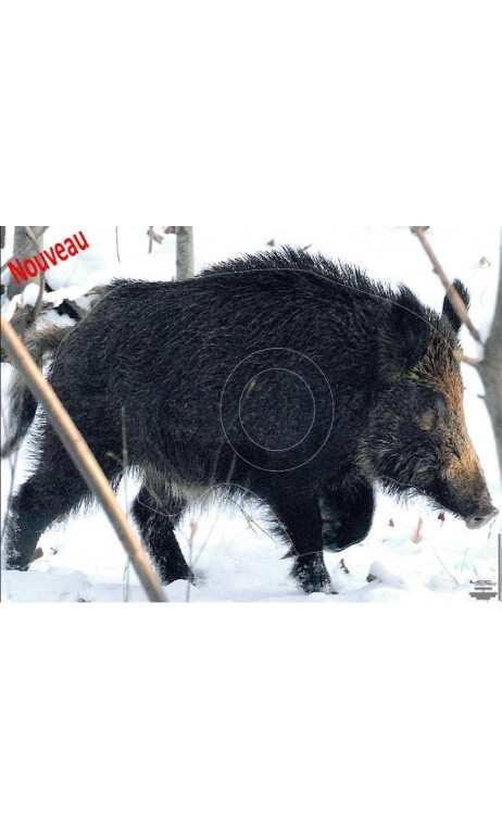 Objetivo jabalí bajo la nieve LCC ARCHERY - ARQUERÍA DE ULYSSE - ULISES CON ARCO