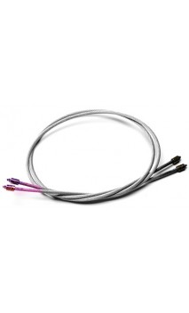 Short Cable POWER Bow Phoenix Osprey ONEIDA - Ulysses archery - equipment - accessorie -