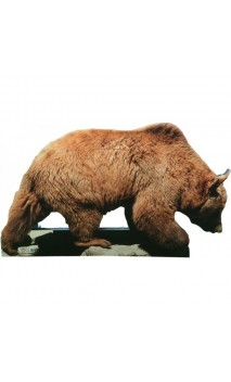 Orso bersaglio 2D Archer Targets