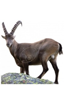 Obiettivo della capra di montagna 2D archer Targets