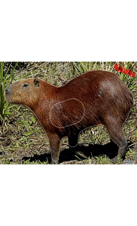 CAPYBARA - Ulysses archery - equipment - accessorie -