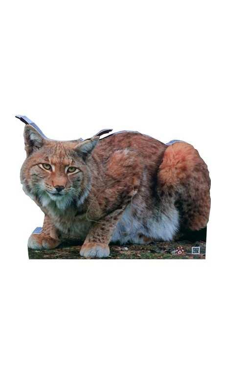 Cible de Lynx 2D Archer Targets - ULYSSE ARCHERIE