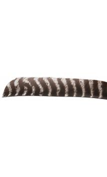 Piume di tacchino selvatiche secondarie selvatiche Tutto barrato naturale. - Tiro con l'arco di Ulisse - ULISSE TIRO CON L'AR...