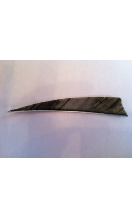 "Plume Naturelle Shield 5"" Camo Grise GATEWAY - ULYSSE ARCHERIE"