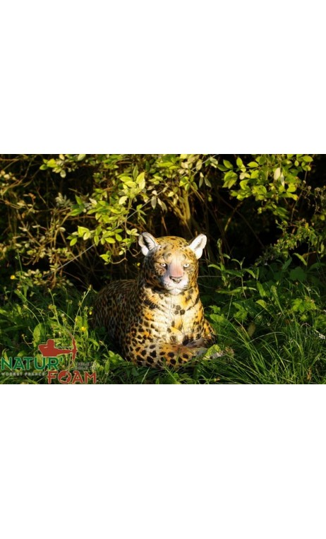 LEOPARD AU REPOS NATUR FOAM - Ulysses archery - equipment - accessorie -