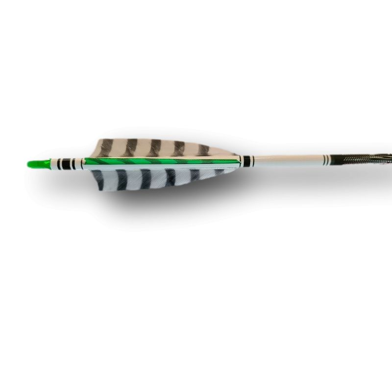 "Carbon arrows PARTIZAN EXTREME HB Shield 4"" Tigrée HENRY BODNIK - ULYSSE ARCHERIE"