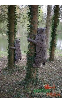 Cible 3D Lynx Grimpant NATUR FOAM