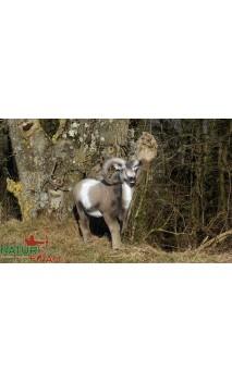 Cible 3d Mouflon Debout NATUR FOAM