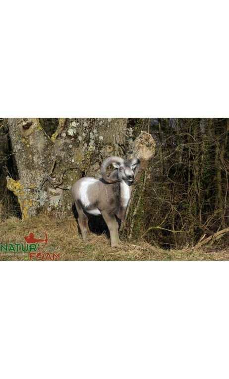 Cible 3d Mouflon Debout NATUR FOAM - ULYSSE ARCHERIE