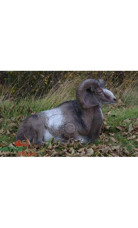 Cible 3D Mouflon Gite NATUR FOAM  - ULYSSE ARCHERIE