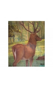 Cible papier CERF vu arriere (JVD Animal Face Large Deer )