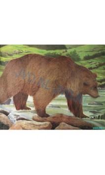 OURS BRUN (JVD Animal Face Bear )
