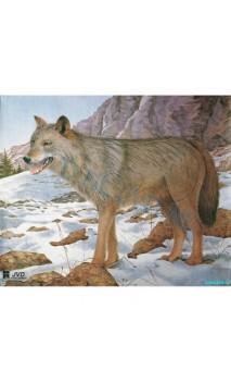 LOUP (jvd animal face wolf)
