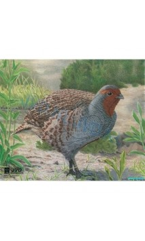 PERDRIX(JVD Animal Face Partridge )