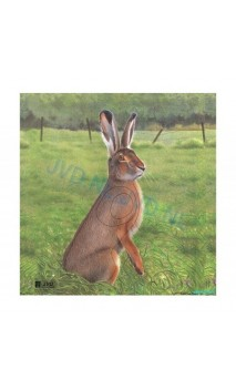 LIEVRE (JVD Animal Face Hare ) - ULYSSE ARCHERIE